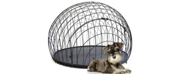 dog-crate-post4